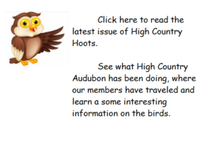 High Country Hoots